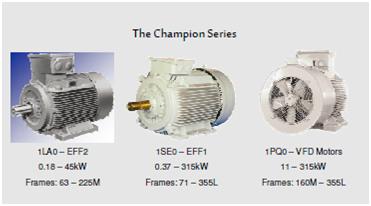 Champion Series
